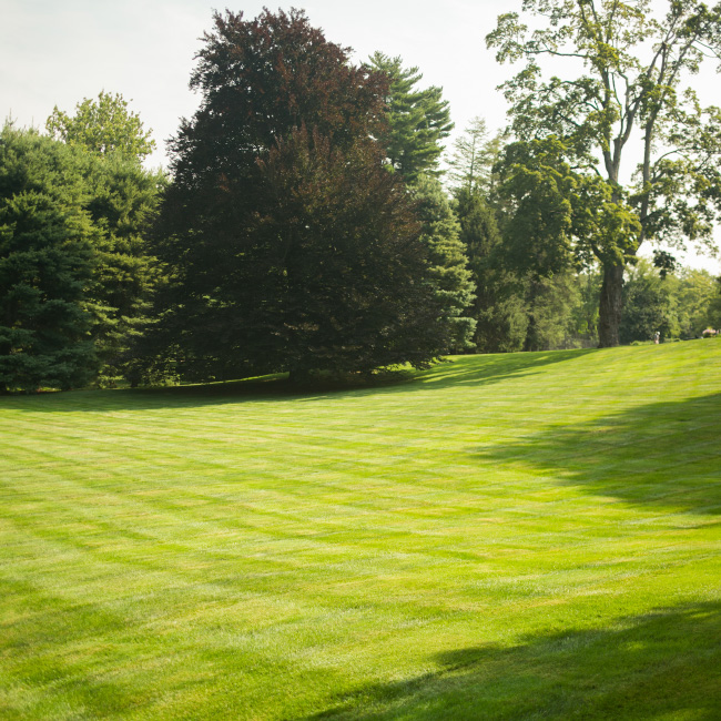 The LaurelRock Company provides core property maintenance including turf + plant health care.