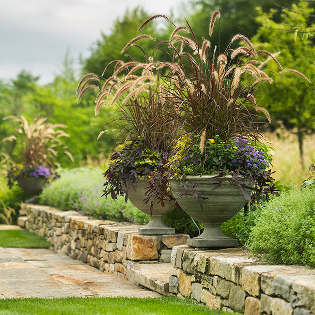 The LaurelRock Company provides year-round property enhancements such as ornamental grasses in the Summer.